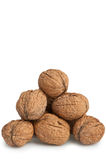 Heap walnut Royalty Free Stock Photography