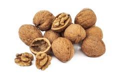 Heap of walnut Stock Photography
