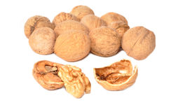 Heap of walnuts. In a shell Stock Photography