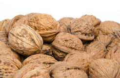 Heap of walnuts Royalty Free Stock Photo