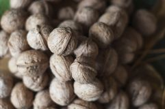 A heap of walnuts on a leaf Royalty Free Stock Photos