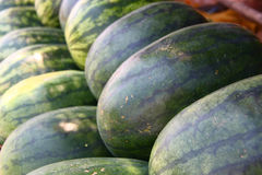 Heap of watermelons Stock Photo