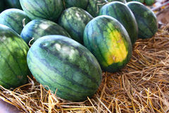 Heap of watermelons and Straw Stock Images