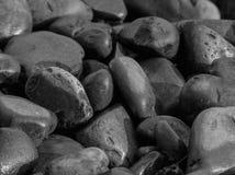 Heap of wet stones Stock Photo