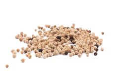 Heap of white spicy peppercorn. Royalty Free Stock Image