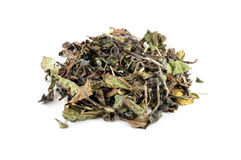 Heap of white tea. Indian white tea with vanilla, myrtle and lemongrass, isolated on white Stock Photos