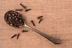 Whole Cloves on a spoon royalty free stock photos