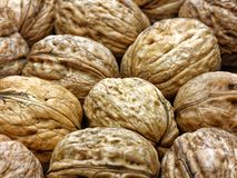 Heap whole walnuts nutshell closeup. Heap whole walnuts nutshell close up stock image
