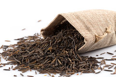 Heap of wild rice on white background Stock Images