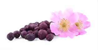 The heap of wild rose fruits  with its flowers Stock Photo