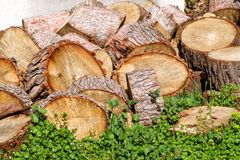Heap of wood logs ready for winter. Cut tree trunks on grass. Stack of chopped firewood. A pile of woods in the house storage. Royalty Free Stock Image