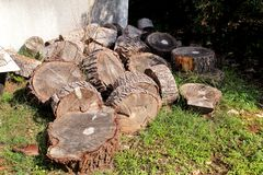 Heap of wood logs ready for winter. Cut tree trunks on grass. Stack of chopped firewood. A pile of woods in the house storage. Stock Images