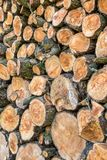 Heap of wood logs ready for winter. Royalty Free Stock Photography