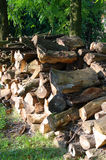Heap of wooden logs Stock Photography