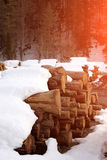 Heap of wooden logs Royalty Free Stock Photography