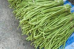 Heap of Yard Long Bean. On Sale  at  Farmer's Market Royalty Free Stock Photos