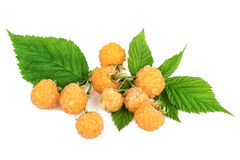 Heap of yellow raspberries with leaves Stock Image