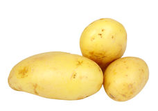 Heap of yellow raw potatos Royalty Free Stock Photo