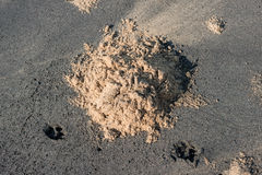 Heap of yellow sand on black Stock Photos