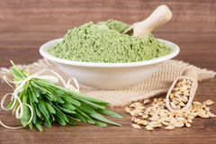 Heap of young powder barley, barley grass and grain on jute canvas, wooden background. Young powder barley in glass bowl, barley grass and grain on jute canvas Royalty Free Stock Images
