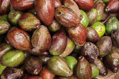 Heaped pile of avacados Royalty Free Stock Photos