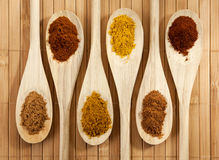 Six spices on wooden spoons Stock Images