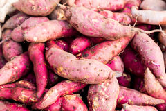 Heaps of freshly harvested purple skin sweet potatoes roots Royalty Free Stock Images