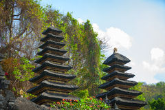 Heaps of Guano at Goa Lawah Bat Cave Temple in Bali Royalty Free Stock Photo