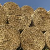 Heaps of hay Royalty Free Stock Photography