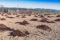 Heaps of manure Royalty Free Stock Images
