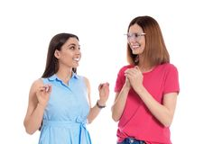 Hearing impaired friends using sign language for communication isolated. On white stock image
