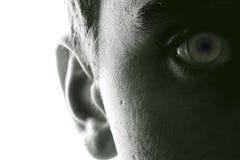 Hearing och vision arkivbild