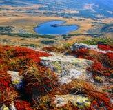 Heart湖在Rila,保加利亚 库存照片