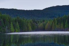 Heart湖风景看法在Ladysmith,温哥华岛, Britis 库存图片