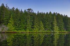 Heart湖风景看法在Ladysmith,温哥华岛, Britis 免版税图库摄影
