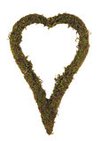 Heart. Moss heart against a white background Stock Images