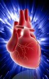 Heart Stock Photos