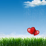 The heart Stock Photography