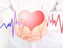 Heart. Stock Photos