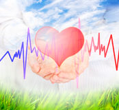 Heart. Royalty Free Stock Images