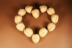 Heart. Made from walnuts on a brown background Stock Photos
