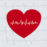 Heart 2. The cardiograms against red heart Stock Photography