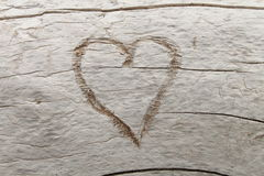 Heart. Carved into white driftwood Stock Image