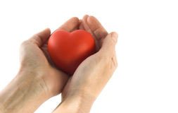 Heart. Isolated sponge heart and hands with room for copy ,text Royalty Free Stock Images