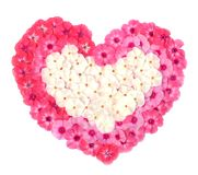 Heart. From petals of Stock Images