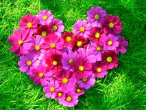 Heart. Of red flowers on a green lawn Royalty Free Stock Photo