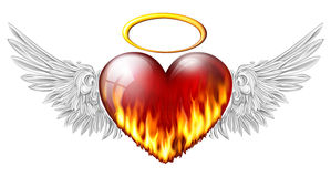 Heart with angel wings. Fiery heart with angel wings on white Stock Photos