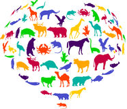 Heart for Animal. To have a heart for Animals Stock Images