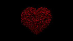 Heart animation from rose petals. HD stock video footage