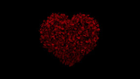 Heart animation from rose petals. HD stock footage